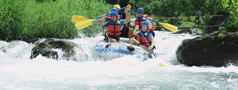Activities & Day Trips